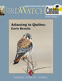 Birdwatch Canada Cover